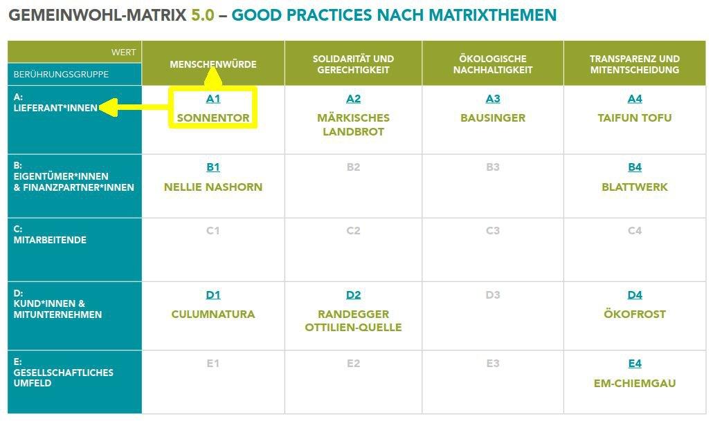 GWÖ-Matrix 5.0
